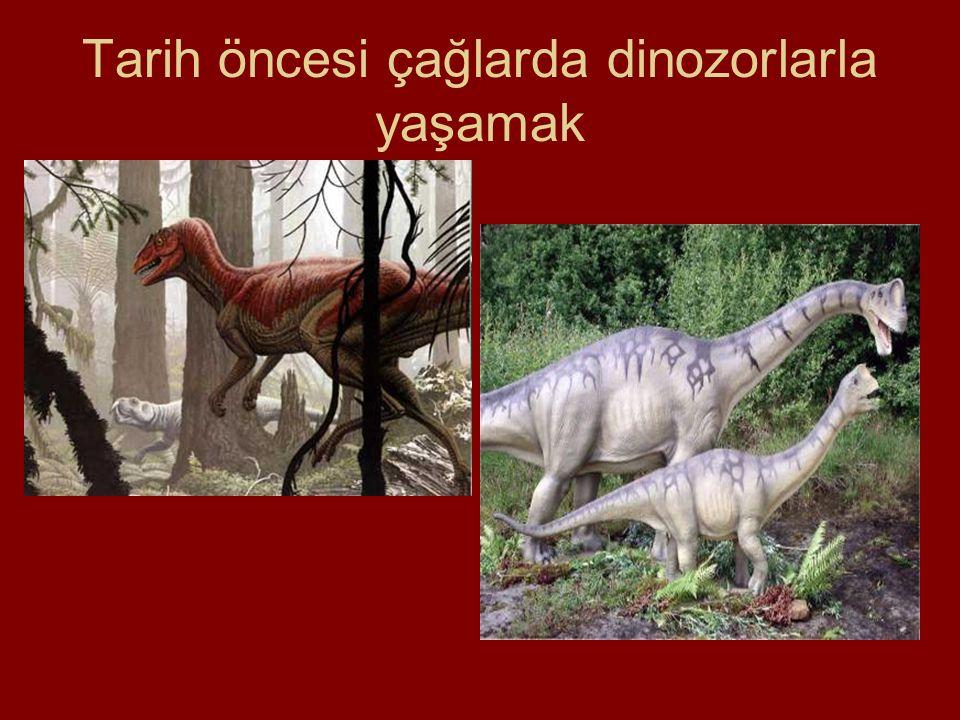 Tarih öncesi çağlarda dinozorlarla yaşamak