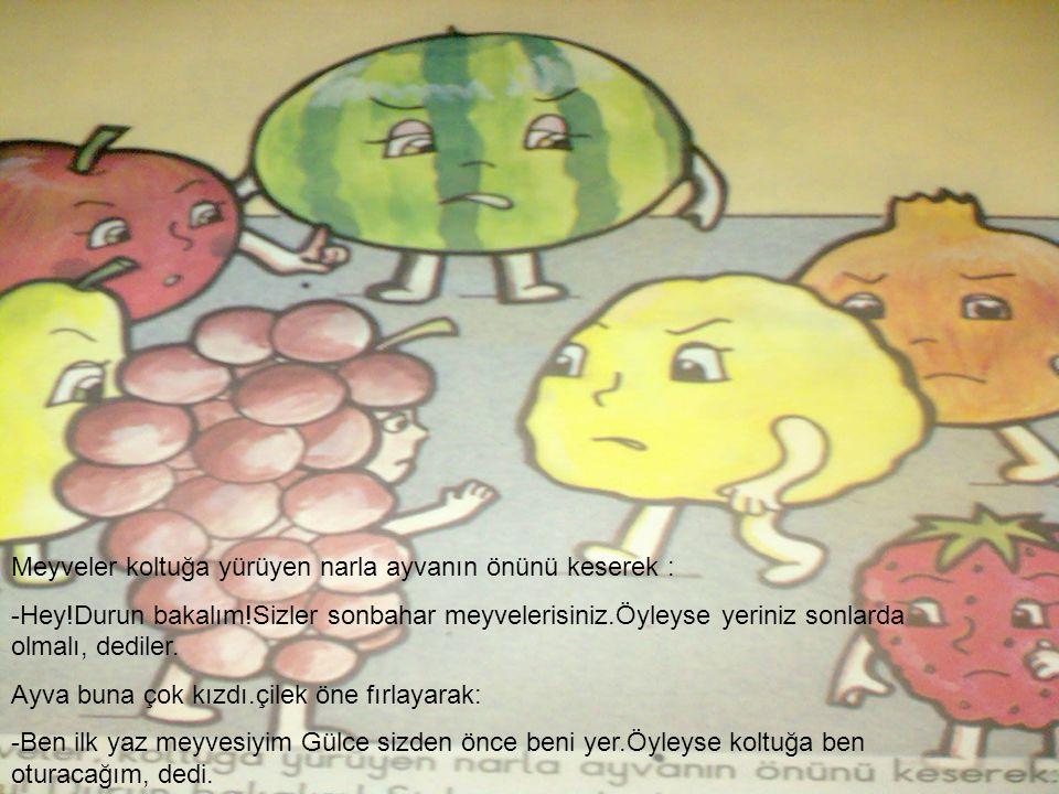 Meyveler koltuğa yürüyen narla ayvanın önünü keserek : -Hey!Durun bakalım!Sizler sonbahar meyvelerisiniz.Öyleyse yeriniz sonlarda olmalı, dediler. Ayv