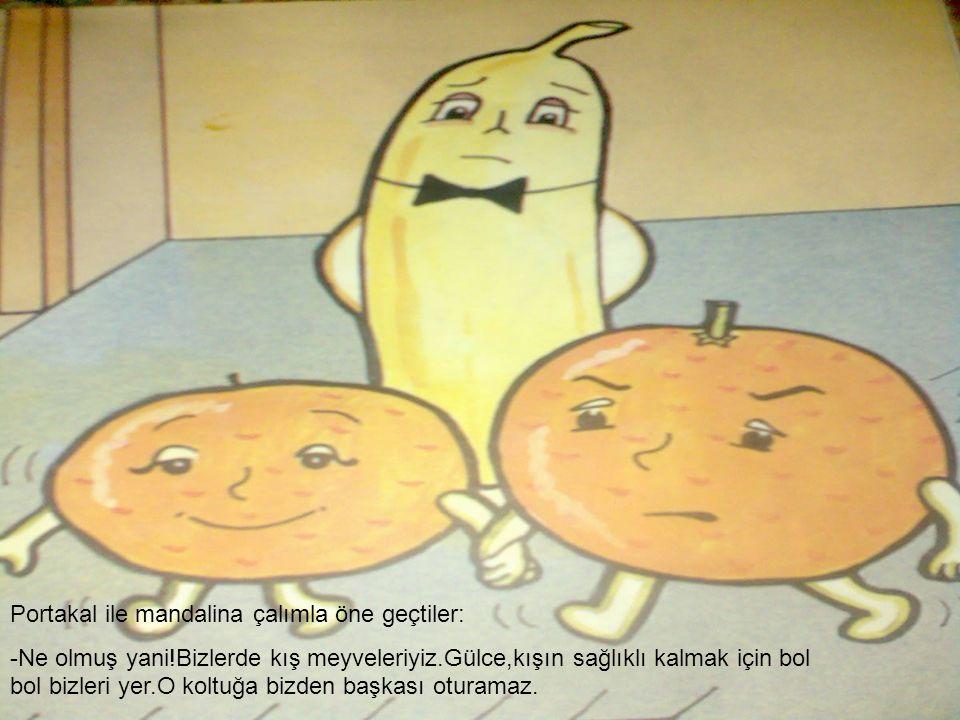 Portakal ile mandalina çalımla öne geçtiler: -Ne olmuş yani!Bizlerde kış meyveleriyiz.Gülce,kışın sağlıklı kalmak için bol bol bizleri yer.O koltuğa b