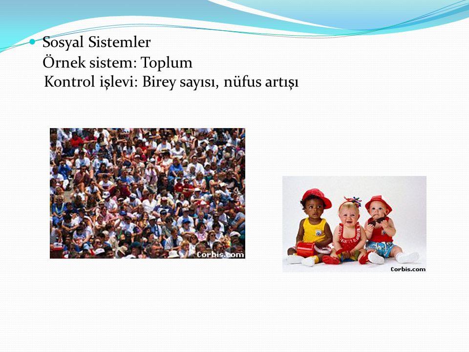 Sosyal Sistemler Örnek sistem: Toplum Kontrol işlevi: Birey sayısı, nüfus artışı
