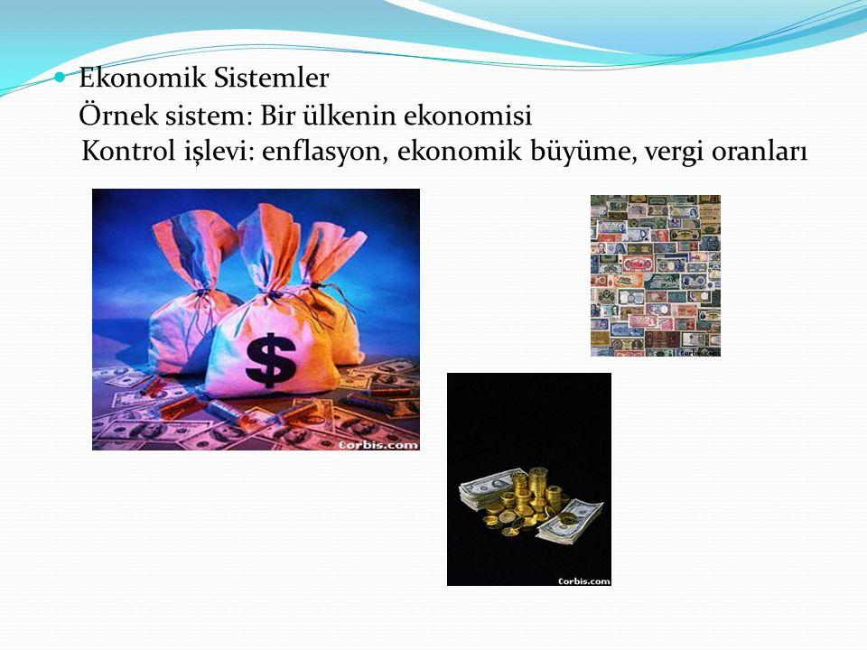Ekonomik Sistemler Örnek sistem: Bir ülkenin ekonomisi Kontrol işlevi: enflasyon, ekonomik büyüme, vergi oranları