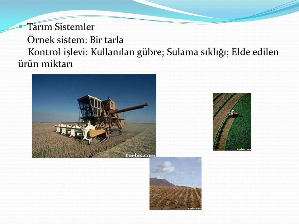 Tarım Sistemler Örnek sistem: Bir tarla Kontrol işlevi: Kullanılan gübre; Sulama sıklığı; Elde edilen ürün miktarı