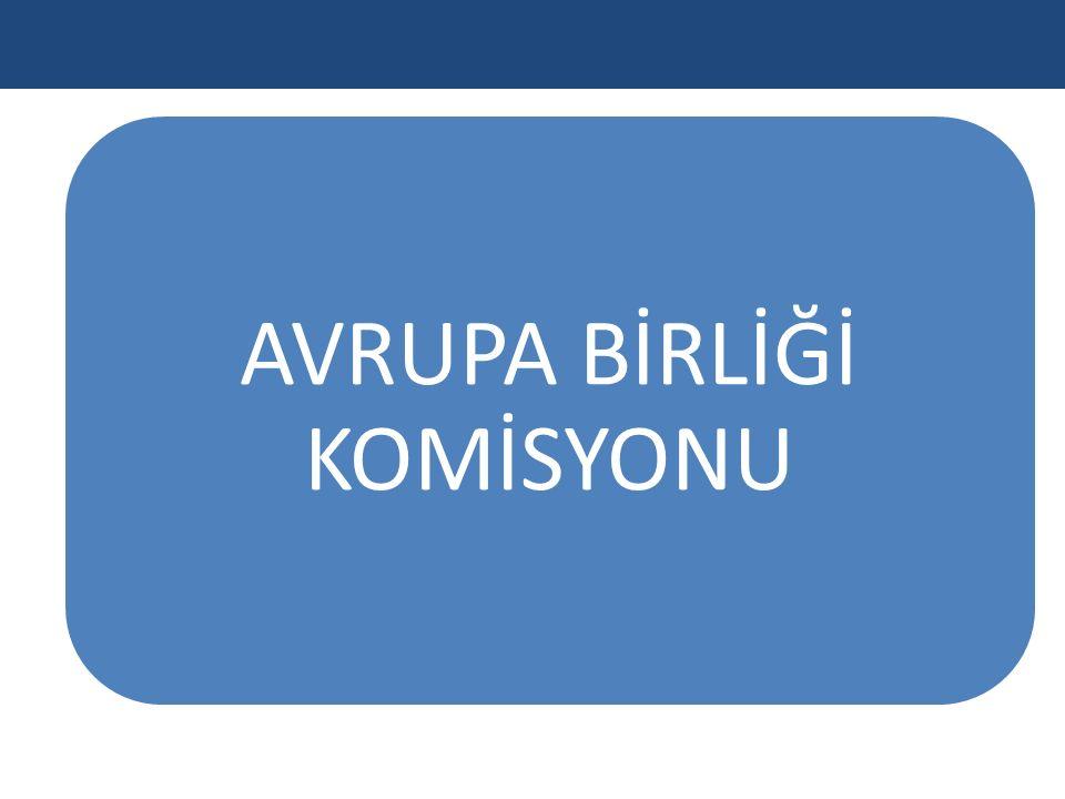 AVRUPA BİRLİĞİ KOMİSYONU