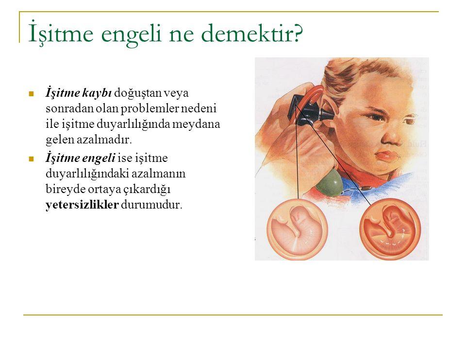 İşitme organımız olan kulak üç bölümden oluşur