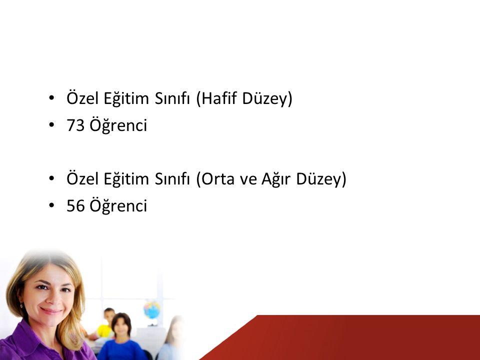 Özel Eğitim Sınıfı (Hafif Düzey) 73 Öğrenci Özel Eğitim Sınıfı (Orta ve Ağır Düzey) 56 Öğrenci