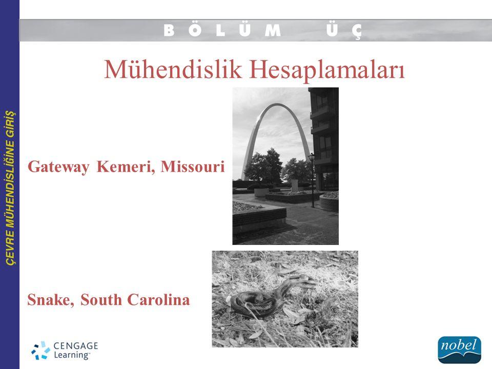 Mühendislik Hesaplamaları Gateway Kemeri, Missouri Snake, South Carolina