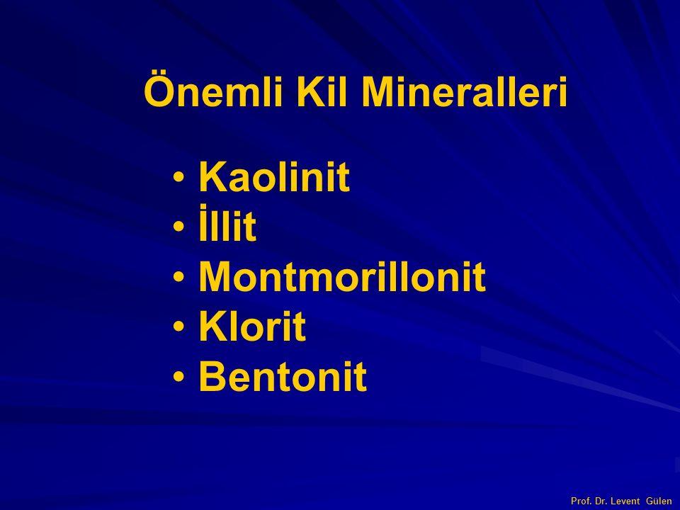 Önemli Kil Mineralleri Kaolinit İllit Montmorillonit Klorit Bentonit Prof. Dr. Levent Gülen