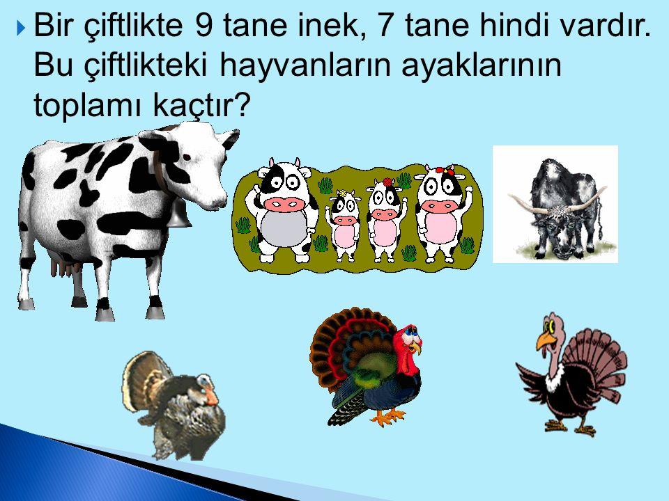  Hejar'ın sepetindeki elmaların çeyreği 14 tanedir. Bu elmaların 23 tanesini arkadaşı Olida'ya verdiğine göre Hejar'ın sepetinde kaç tane elma kalmış