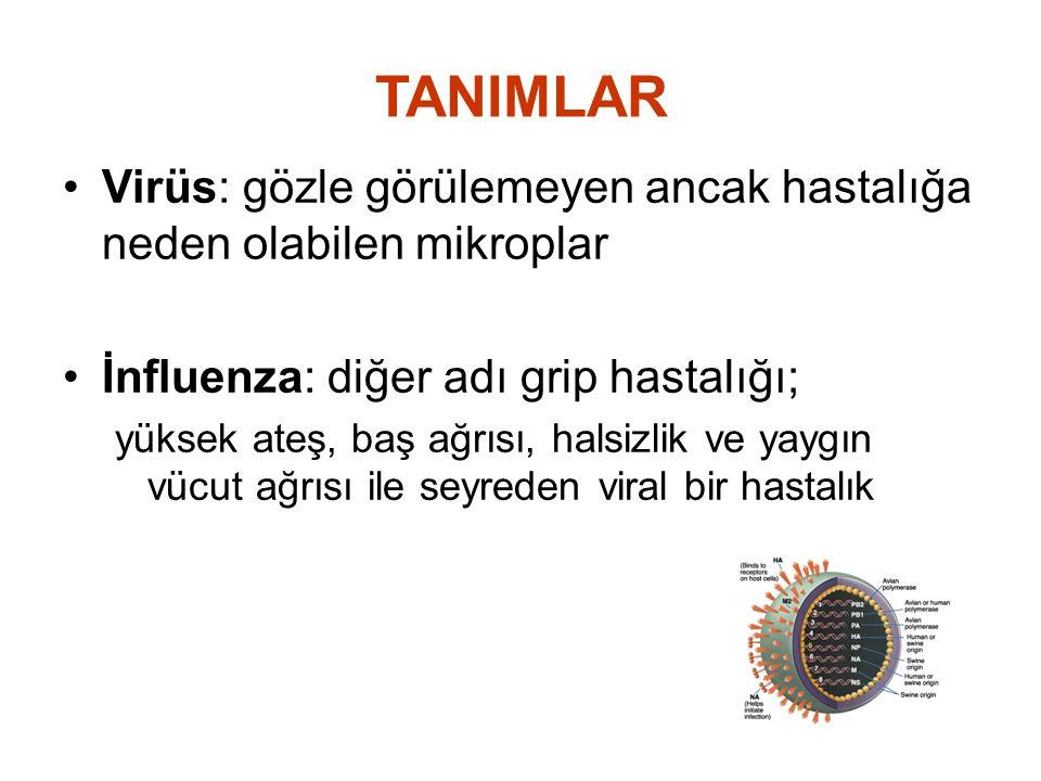 TANIMLAR Virüs: gözle görülemeyen ancak hastalığa neden olabilen mikroplar İnfluenza: diğer adı grip hastalığı; yüksek ateş, baş ağrısı, halsizlik ve
