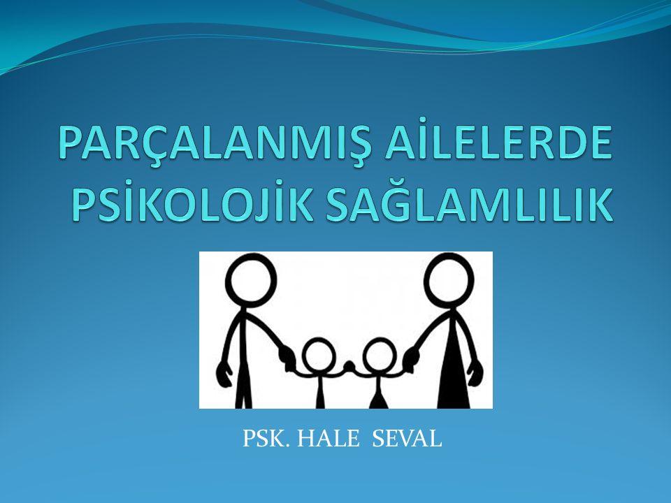 Aile Ailenin işlevleri Parçalanmış Aile Boşanma ve Çocuk Boşanma ve Ergen Okulun İşlevleri Yasal Düzenlemeler