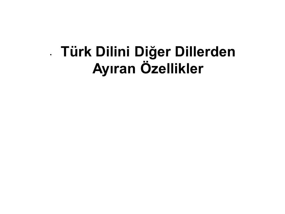 Türk Dilini Diğer Dillerden Ayıran Özellikler