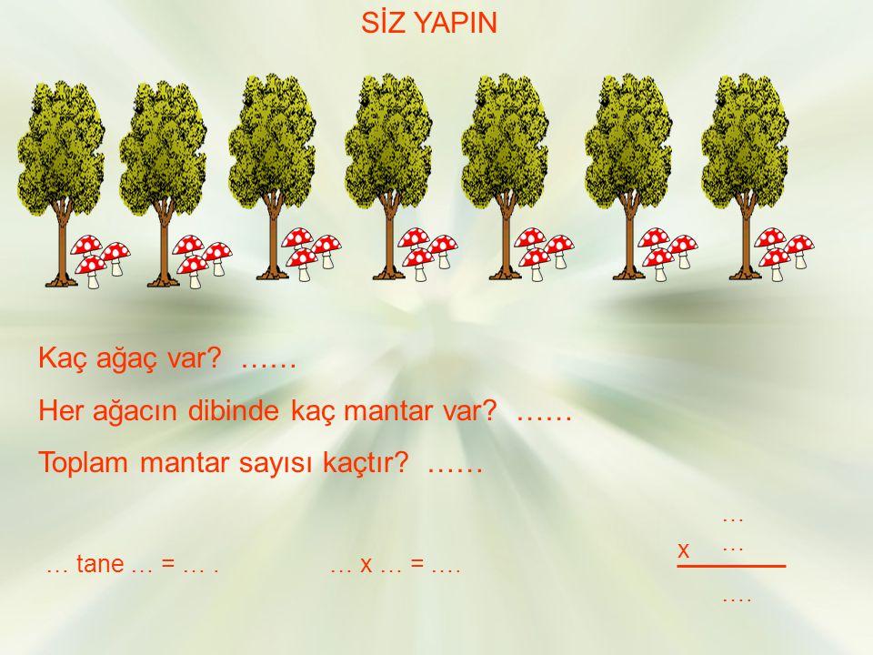 SİZ YAPIN Kaç ağaç var.…… Her ağacın dibinde kaç mantar var.