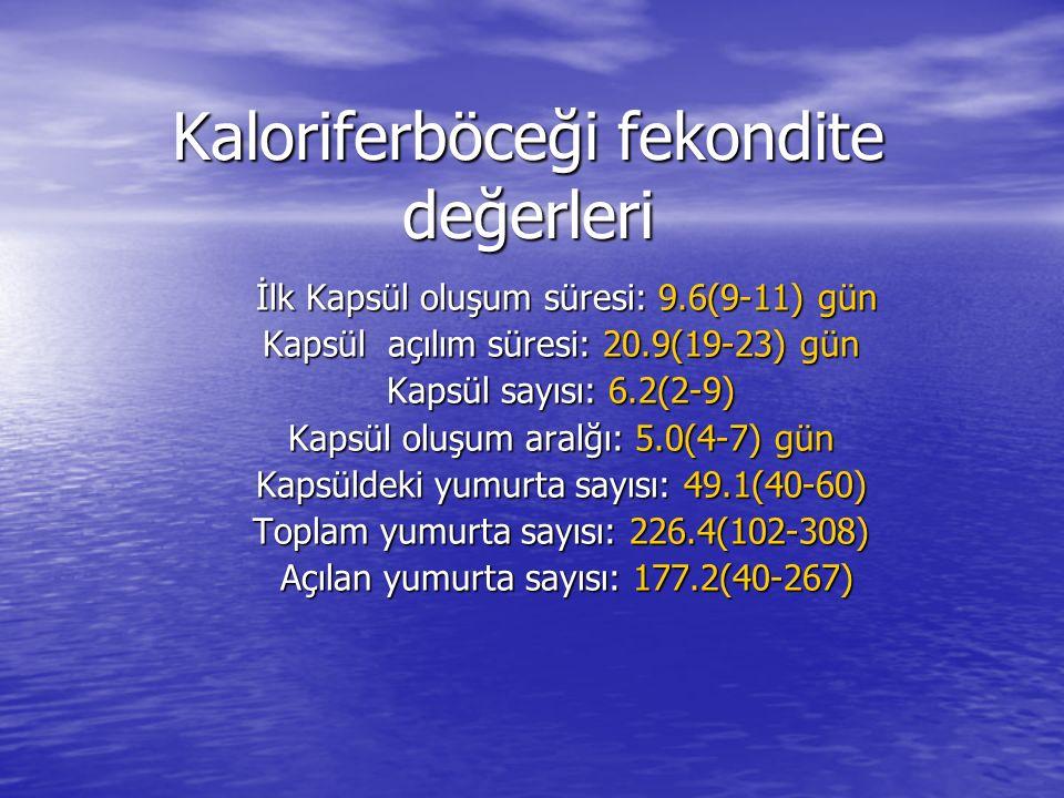 Kaloriferböceği fekondite değerleri İlk Kapsül oluşum süresi: 9.6(9-11) gün İlk Kapsül oluşum süresi: 9.6(9-11) gün Kapsül açılım süresi: 20.9(19-23)