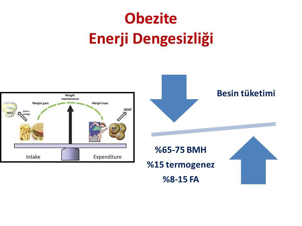 Obezite Enerji Dengesizliği Besin tüketimi %65-75 BMH %15 termogenez %8-15 FA