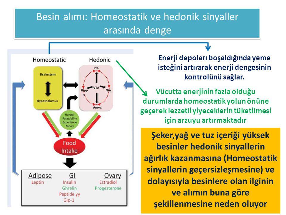 Besin alımı: Homeostatik ve hedonik sinyaller arasında denge Şeker,yağ ve tuz içeriği yüksek besinler hedonik sinyallerin ağırlık kazanmasına (Homeost