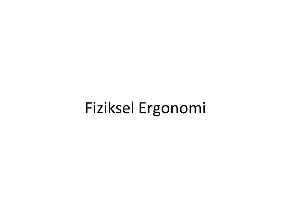 Fiziksel Ergonomi