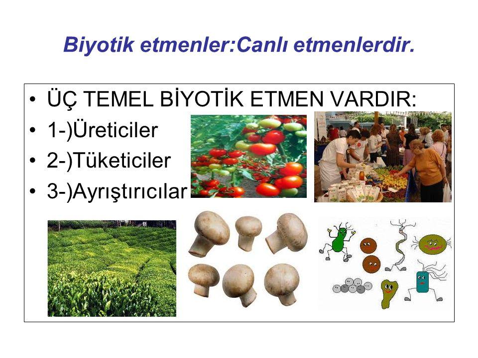 Biyotik etmenler:Canlı etmenlerdir. ÜÇ TEMEL BİYOTİK ETMEN VARDIR: 1-)Üreticiler 2-)Tüketiciler 3-)Ayrıştırıcılar