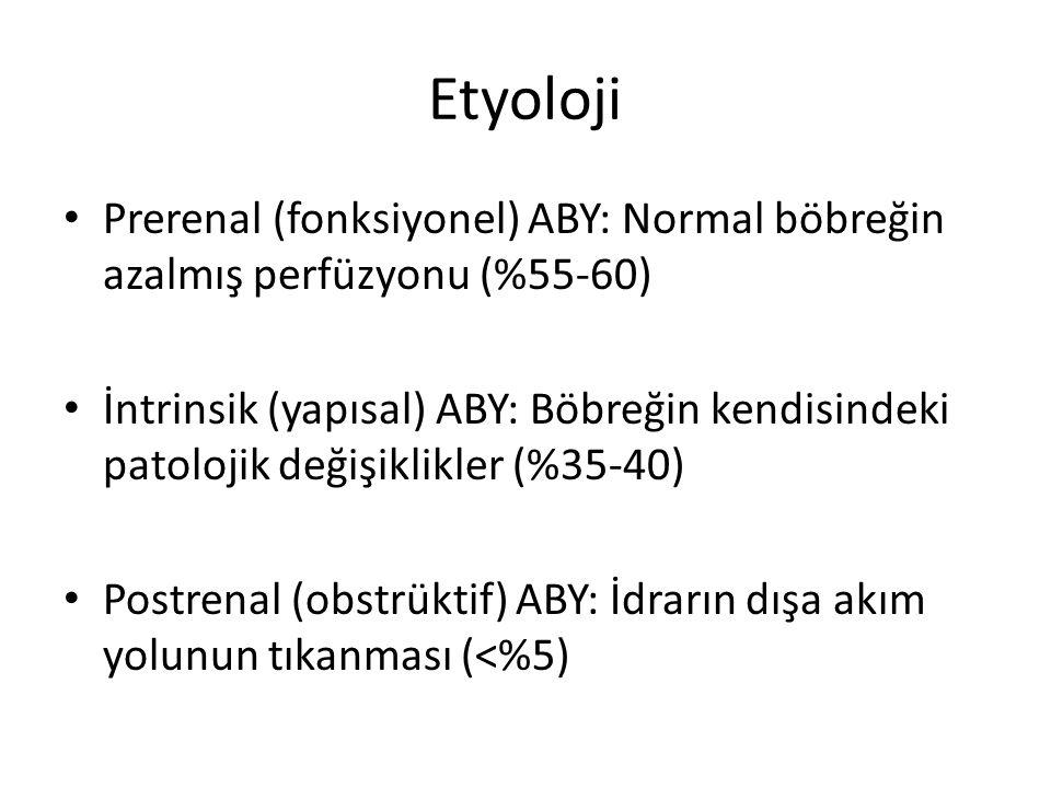 Prerenal ABY Nedenleri Hacim kaybı Hemorajik şok Kusma Diare Diüretikler Tuz kaybettiren nefropati Azalmış kardiak output Myokard İnfarktüsü Kalp kapak hastalıkları Kardiyomyopati Perikardial tamponat β blokörler Yüksek outputlu KY (tirotoksikoz, tiamin eksikliği, Paget hastalığı, arteriovenöz fistül) Renal arter ve küçük damar hastalıkları Embolik olaylar (septik, kolesterol) Transplant rejeksiyonu Orak hücreli anemi Preeklampsi Hiperkalemi HUS Vaskülitler