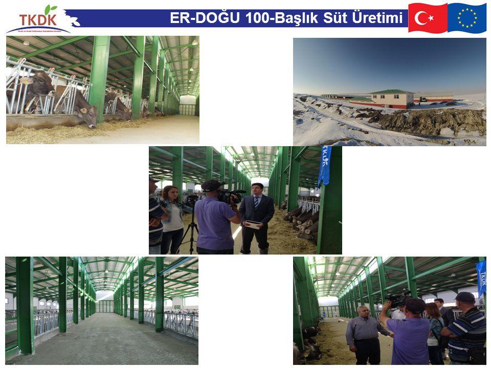 ER-DOĞU 100-Başlık Süt Üretimi 41