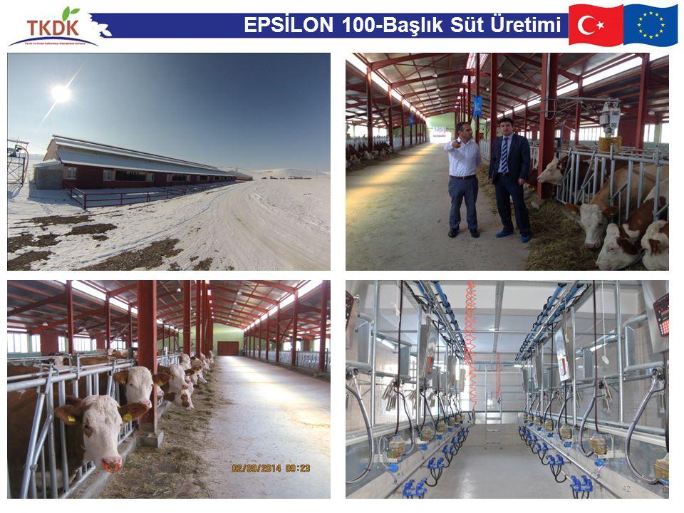 EPSİLON 100-Başlık Süt Üretimi 42