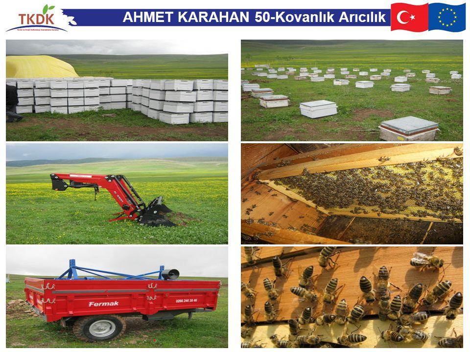 AHMET KARAHAN 50-Kovanlık Arıcılık 53