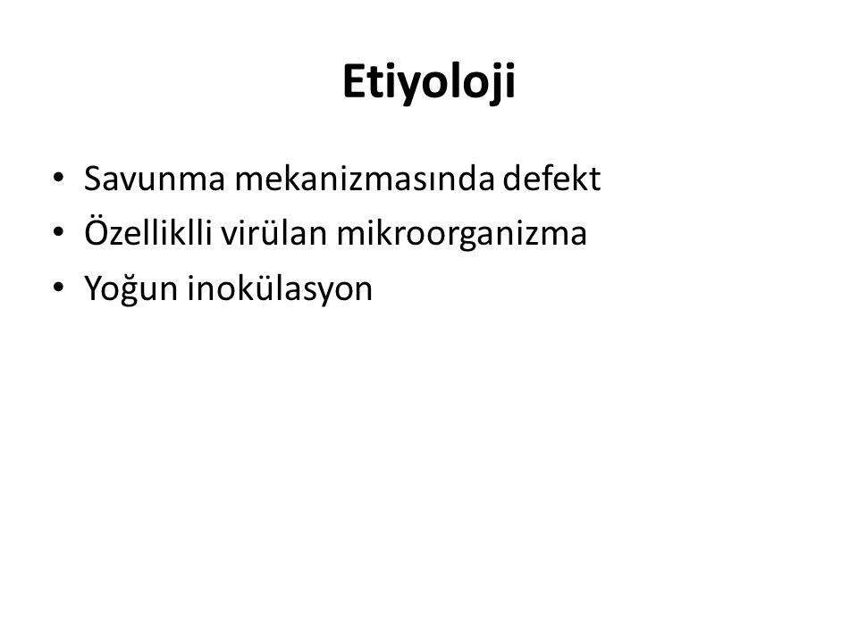 Etiyoloji Streptococcus pneumoniae Influenza virüs Staphilococcus aerius Neisseria menengitis Chlamydia pneumoniae Mycoplasma pneumoniae Mycobacterium spp Nocardia spp Legionella spp