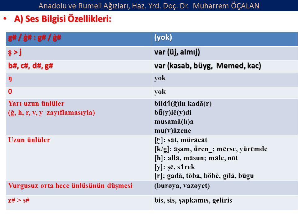 Anadolu ve Rumeli Ağızları, Haz. Yrd. Doç. Dr. Muharrem ÖÇALAN A) Ses Bilgisi Özellikleri: A) Ses Bilgisi Özellikleri: g# / ġ# : g# / ġ# (yok) ş > j v