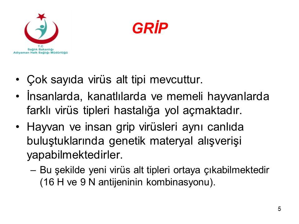5 GRİP Çok sayıda virüs alt tipi mevcuttur. İnsanlarda, kanatlılarda ve memeli hayvanlarda farklı virüs tipleri hastalığa yol açmaktadır. Hayvan ve in