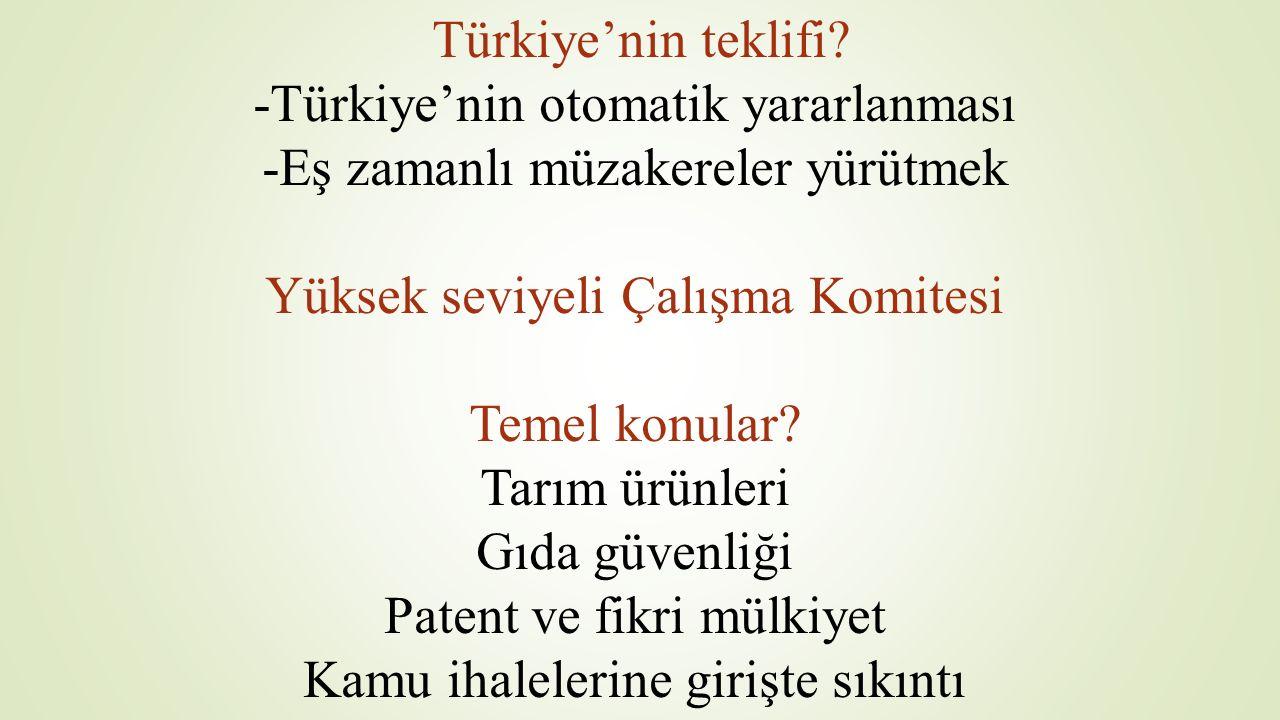 Türkiye'nin teklifi? -Türkiye'nin otomatik yararlanması -Eş zamanlı müzakereler yürütmek Yüksek seviyeli Çalışma Komitesi Temel konular? Tarım ürünler