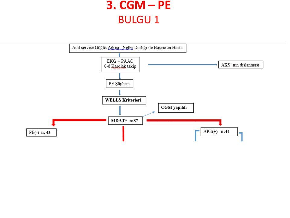 3. CGM – PE BULGU 1