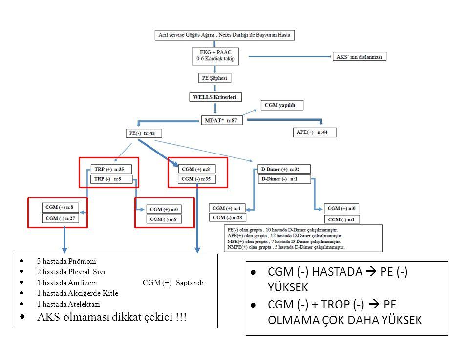  3 hastada Pnömoni  2 hastada Plevral Sıvı  1 hastada Amfizem CGM (+) Saptandı  1 hastada Akciğerde Kitle  1 hastada Atelektazi  AKS olmaması di