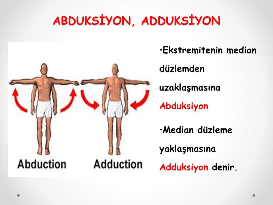 Ekstremitenin median düzlemden uzaklaşmasına Abduksiyon Median düzleme yaklaşmasına Adduksiyon denir.