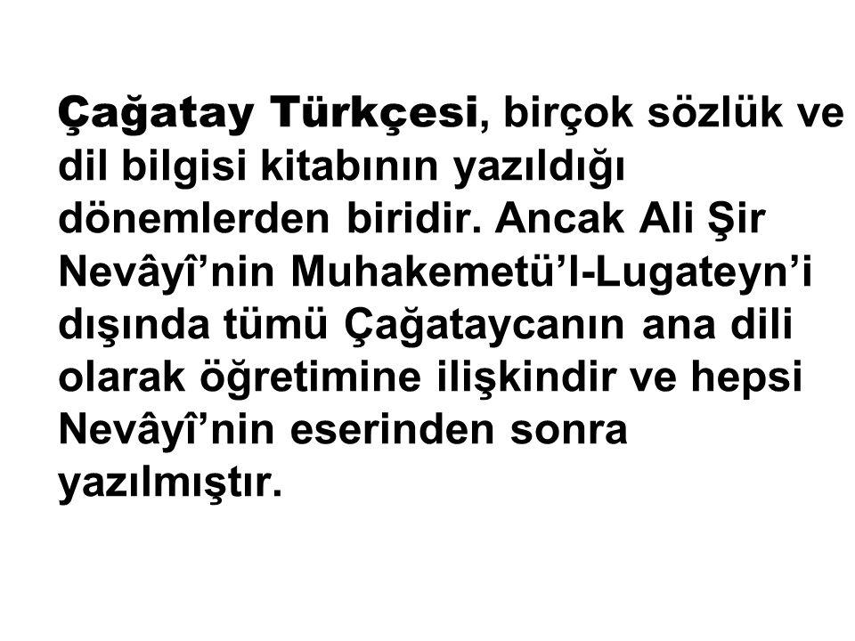 Çağatay Türkçesi, birçok sözlük ve dil bilgisi kitabının yazıldığı dönemlerden biridir. Ancak Ali Şir Nevâyî'nin Muhakemetü'l-Lugateyn'i dışında tümü