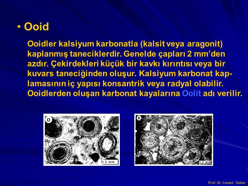 Ooid Ooidler kalsiyum karbonatla (kalsit veya aragonit) kaplanmış taneciklerdir. Genelde çapları 2 mm'den azdır. Çekirdekleri küçük bir kavkı kırıntıs