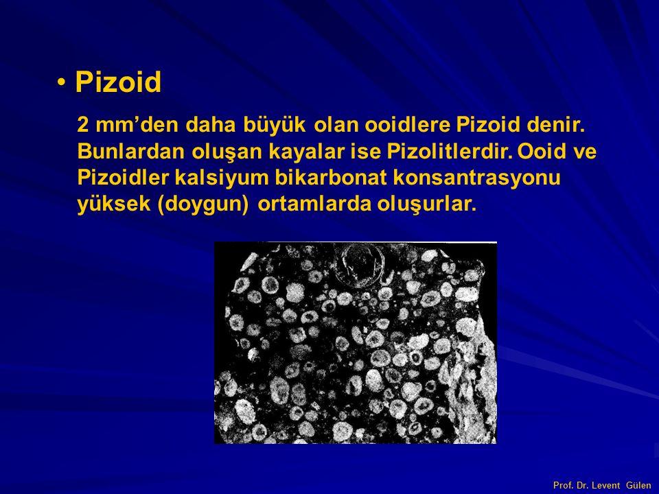 Pizoid 2 mm'den daha büyük olan ooidlere Pizoid denir. Bunlardan oluşan kayalar ise Pizolitlerdir. Ooid ve Pizoidler kalsiyum bikarbonat konsantrasyon