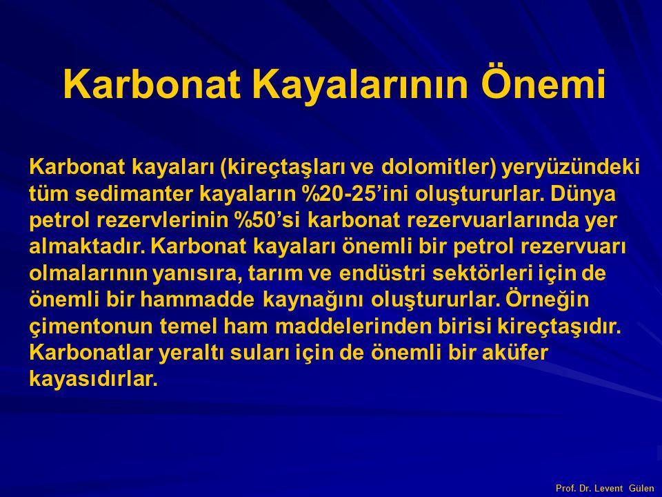 Karbonat Kayalarını İsimlendirme İsim = Bileşen + Çimento Prof. Dr. Levent Gülen