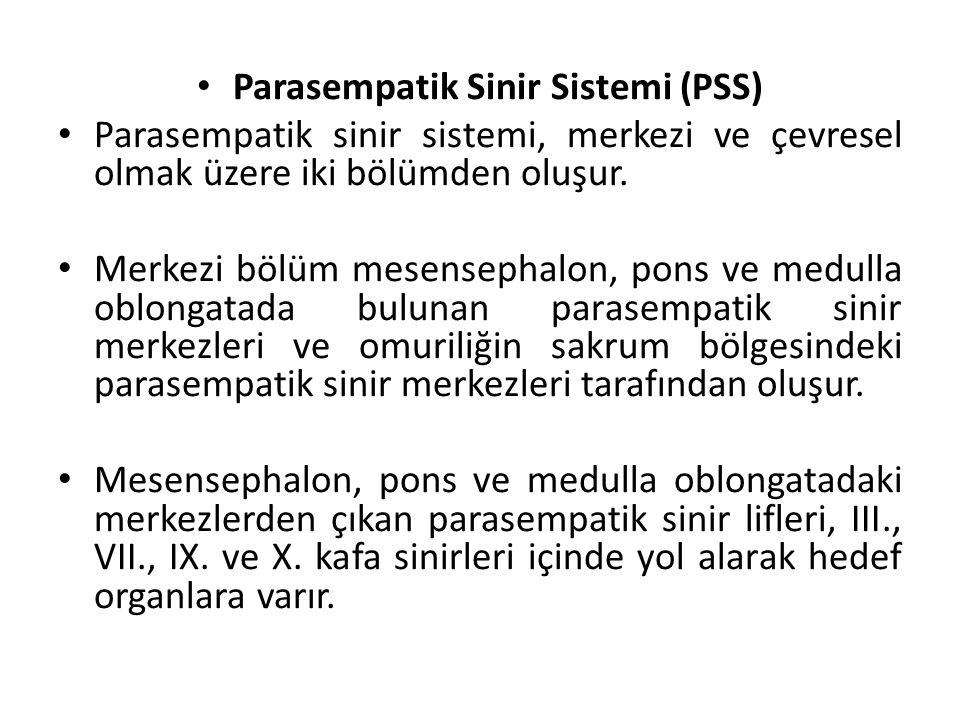 Parasempatik Sinir Sistemi (PSS) Parasempatik sinir sistemi, merkezi ve çevresel olmak üzere iki bölümden oluşur.