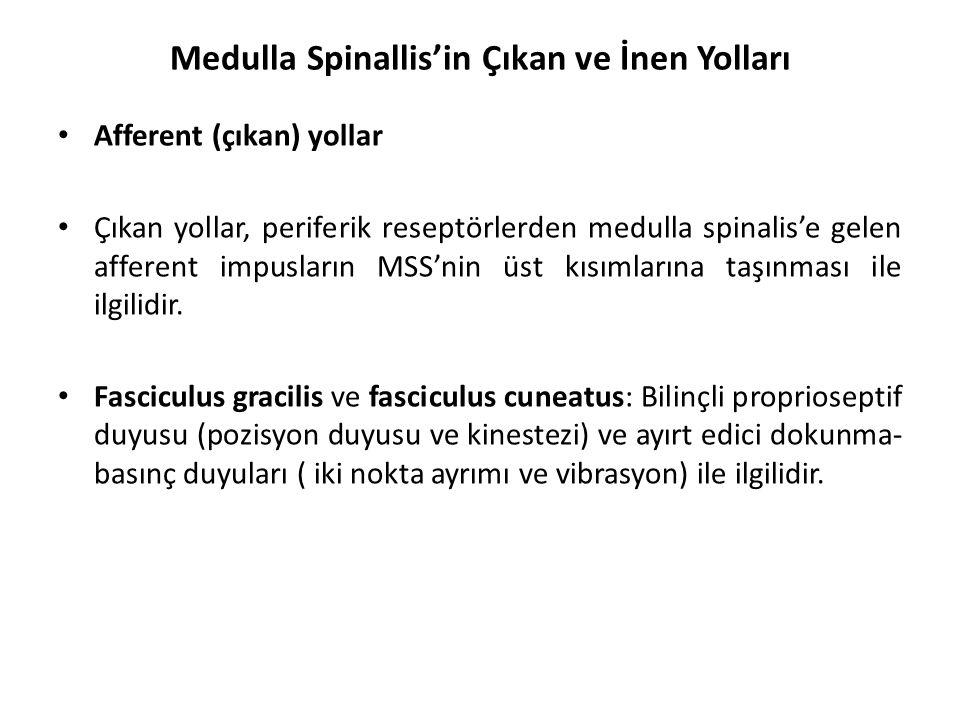 Medulla Spinallis'in Çıkan ve İnen Yolları Afferent (çıkan) yollar Çıkan yollar, periferik reseptörlerden medulla spinalis'e gelen afferent impusların MSS'nin üst kısımlarına taşınması ile ilgilidir.