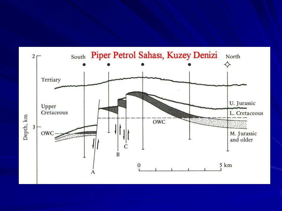 Prof. Dr. Levent Gülen Tuz Domu Petrol Kapanları
