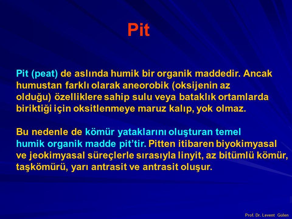 Prof. Dr. Levent Gülen Pit Pit (peat) de aslında humik bir organik maddedir. Ancak humustan farklı olarak aneorobik (oksijenin az olduğu) özelliklere