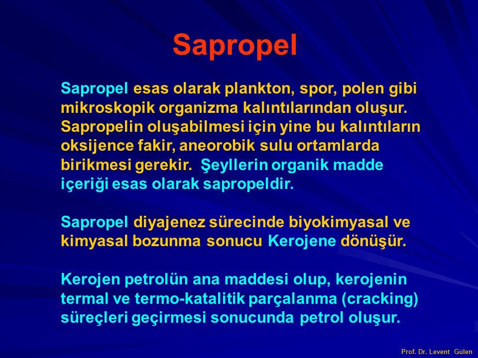 Prof. Dr. Levent Gülen Sapropel Sapropel esas olarak plankton, spor, polen gibi mikroskopik organizma kalıntılarından oluşur. Sapropelin oluşabilmesi