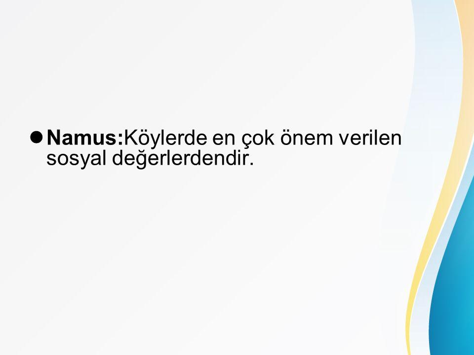 Namus:Köylerde en çok önem verilen sosyal değerlerdendir.