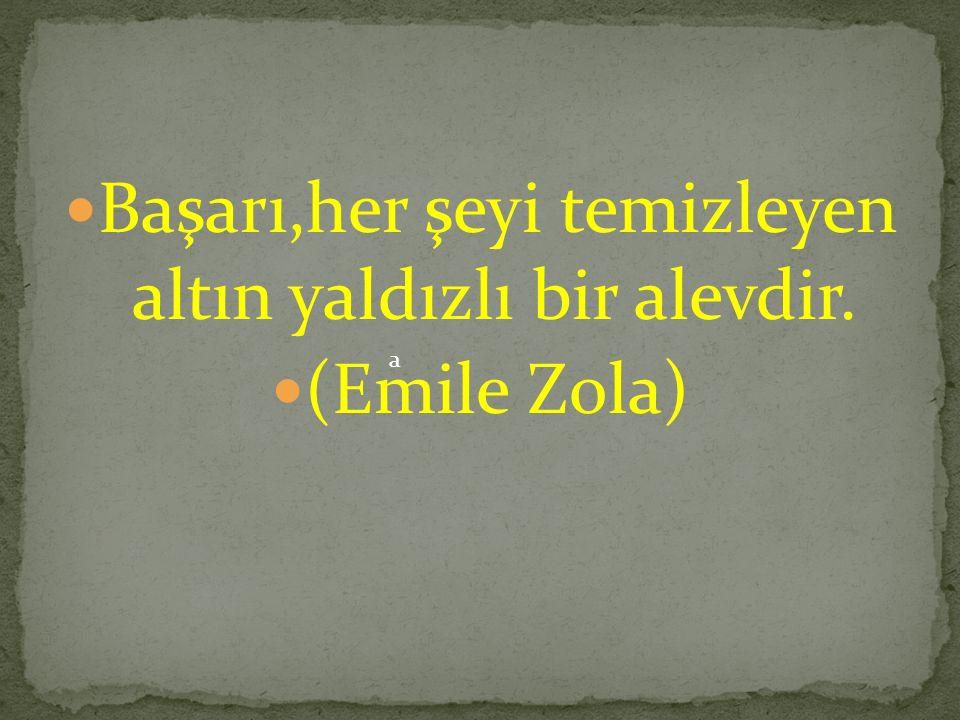 Başarı,her şeyi temizleyen altın yaldızlı bir alevdir. (Emile Zola) a