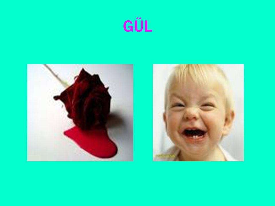 örnek Anneme kırmızı bir gül verdim. Dilek'in anlattığı fıkraya çok güldüm.