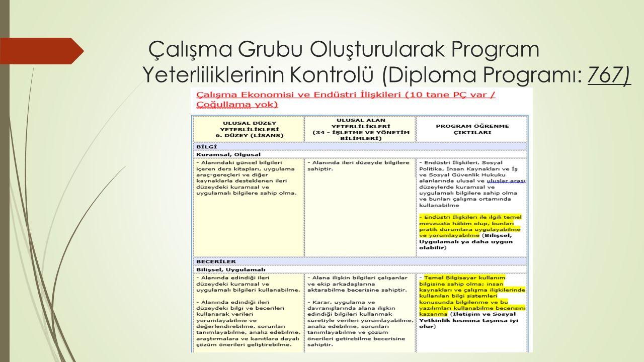 Çalışma Grubu Oluşturularak Program Yeterliliklerinin Kontrolü (Diploma Programı: 767)