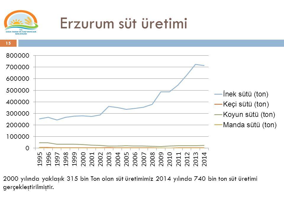 Erzurum süt üretimi 15 2000 yılında yaklaşık 315 bin Ton olan süt üretimimiz 2014 yılında 740 bin ton süt üretimi gerçekleştirilmiştir.