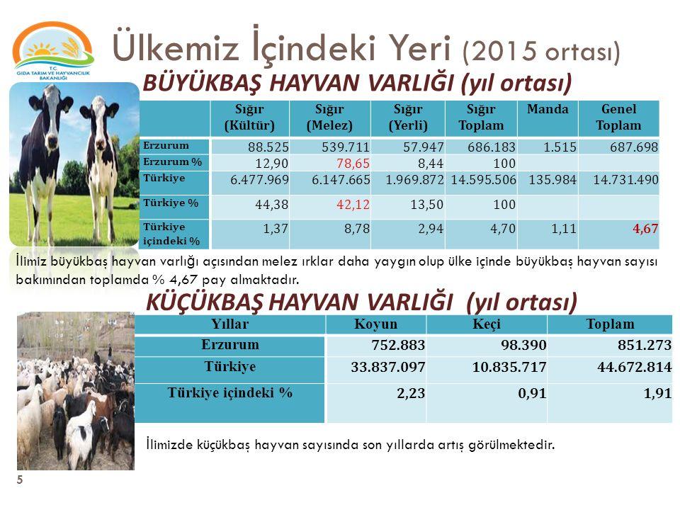 Üretim de ğ erleri (2014) Bitkisel üretim değeri (1000 TL) Canlı hayvanlar değeri (1000 TL) Hayvansal ürünler değeri (1000 TL) Kişi başına bitkisel üretim değeri (TL) Kişi başına canlı hayvanlar değeri (TL) Kişi başına hayvansal ürünler değeri (TL) 2014 Türkiye 97.988.28262.512.14744.332.5061.261805571 Erzurum 477.0451.784.607753.0576252.338987 Payı % 0,52,91,7 2002 Türkiye 32.264.20010.470.7689.399.981 Erzurum 170.508362.657201.711 Payı % 0,53,52,1 Tarımsal Üretim değeri 2002 yılında 735 milyon TL iken, 2014 yılında 4 kat artarak 3 milyar TL olmuştur.