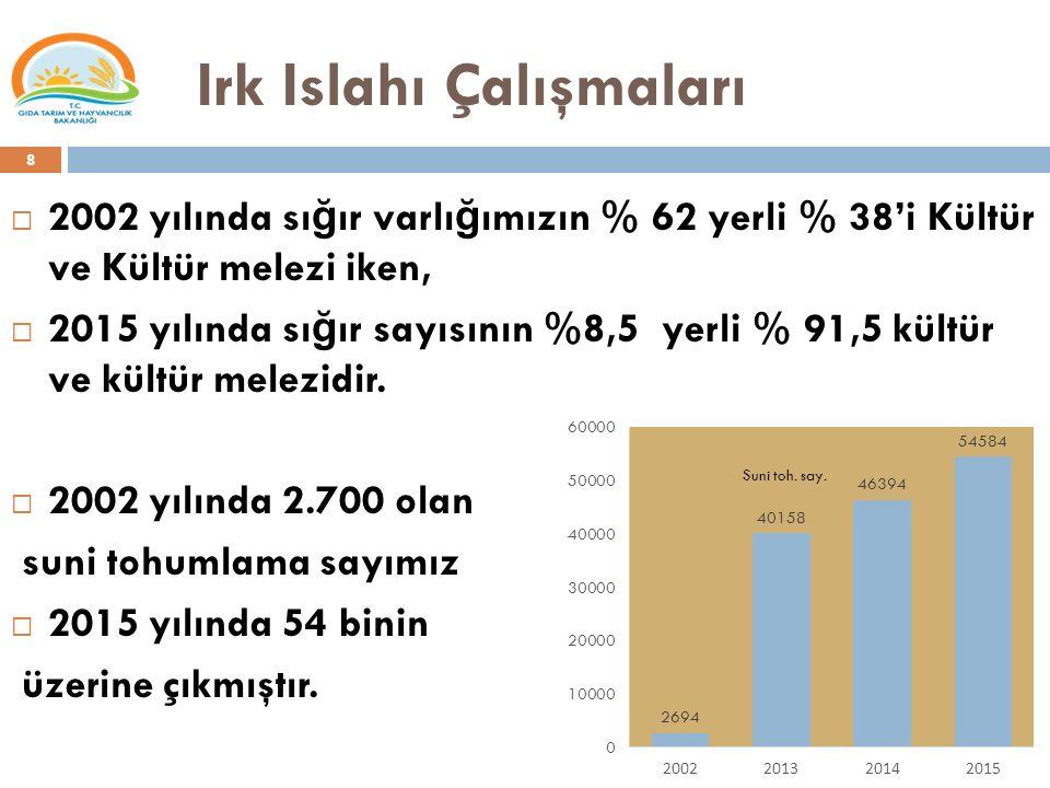 Irk Islahı Çalışmaları  2002 yılında sı ğ ır varlı ğ ımızın % 62 yerli % 38'i Kültür ve Kültür melezi iken,  2015 yılında sı ğ ır sayısının %8,5 yer