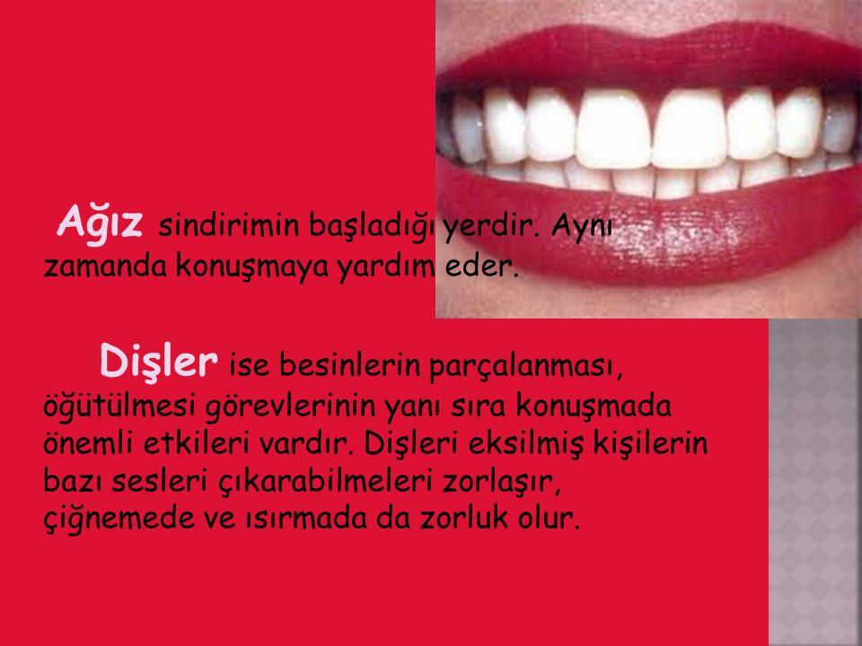 Ağızdaki olumsuzluklar diş sağlığının bozulmasına, sindirimin olumsuz etkilenmesine yol açar.