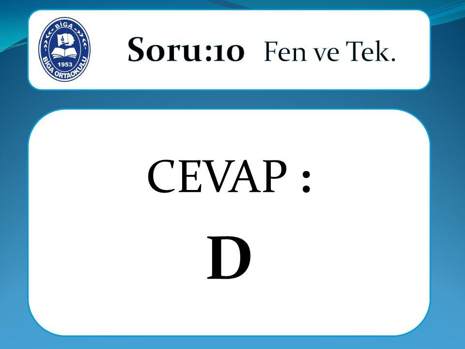 CEVAP : D